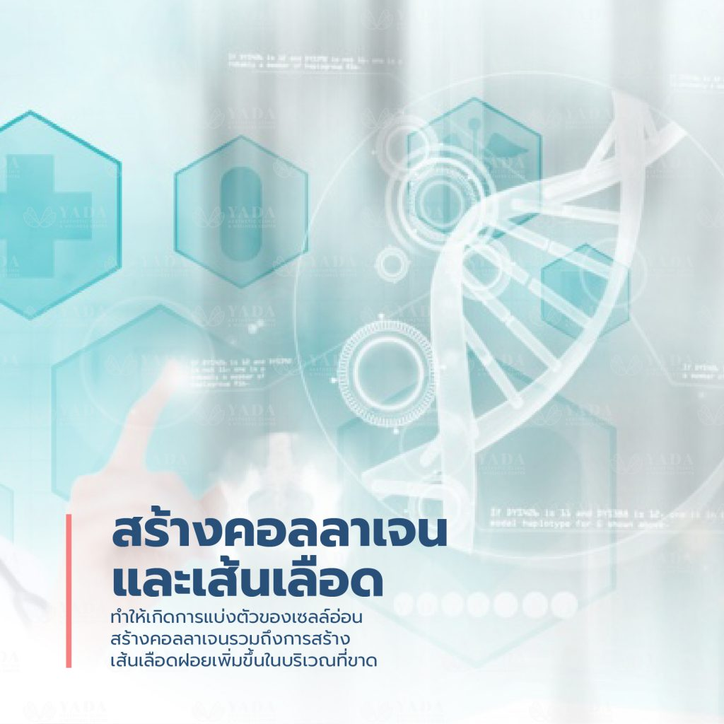 Hyperbaric Oxygen Pattaya6